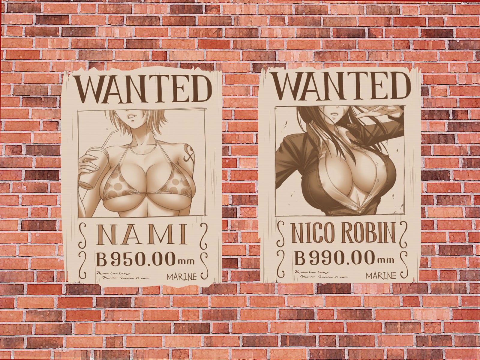 one-piece wanted nami nico стена