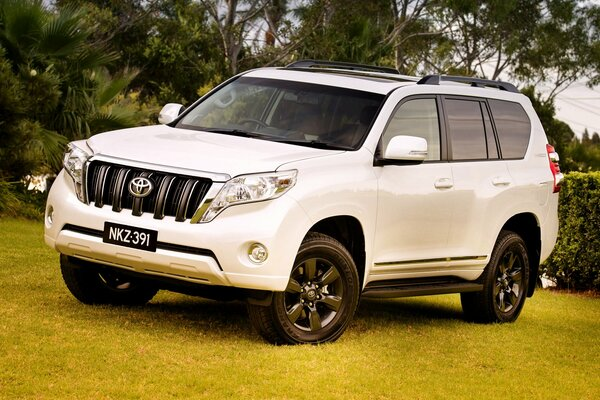 2014 toyota land cruiser прадо тойота ланд крузер