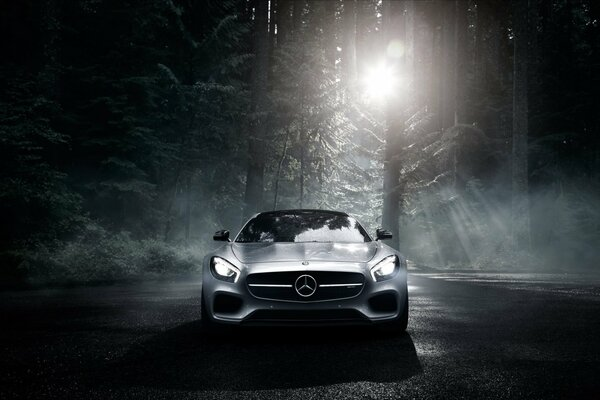 Mercedes-Benz AMG GT S 2016 Silver Color Sun Dark Forest Front