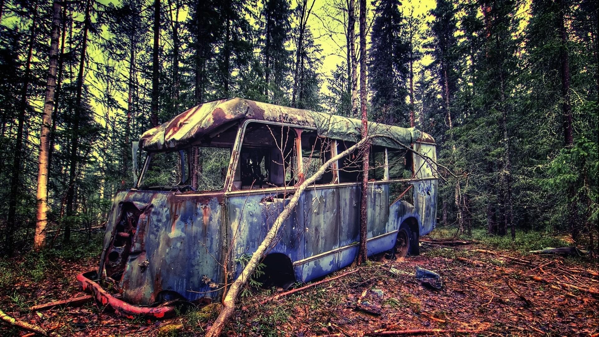 Обои автомобил, лес, брошенный, ржавчина, старый. Разное foto 9