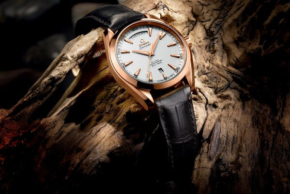 часы омега baselworld 2013 - the seamaster aqua terra day-date