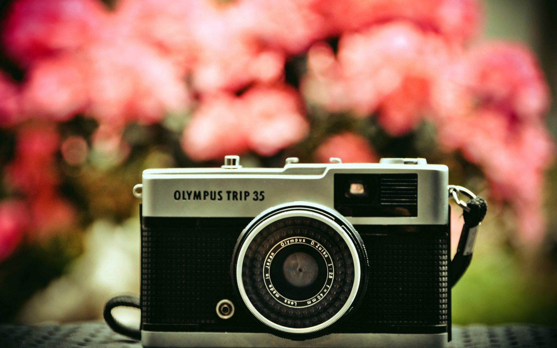 Прикольные картинки для фото батла, акварельные цветы