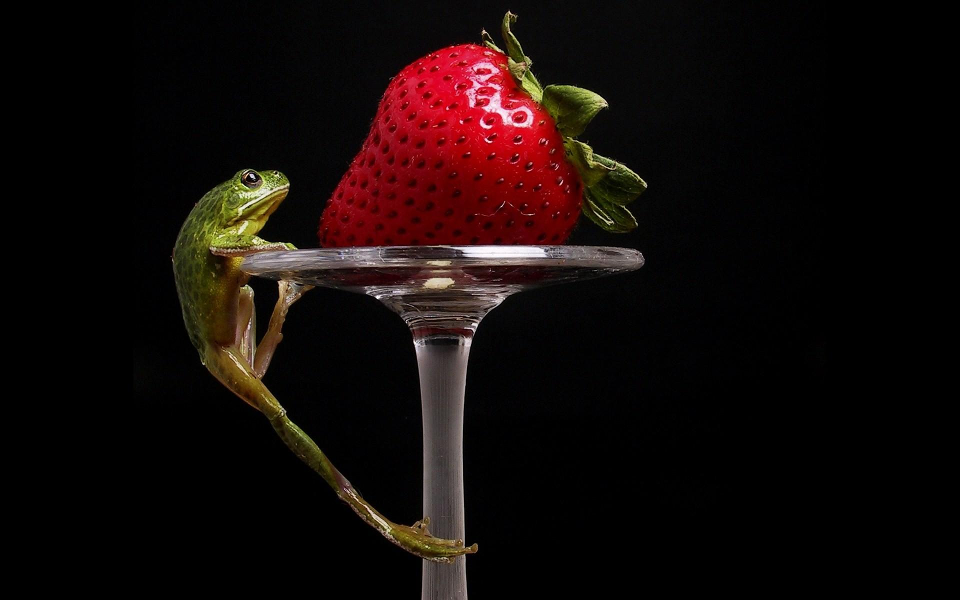 двое, ягоды, смех скачать