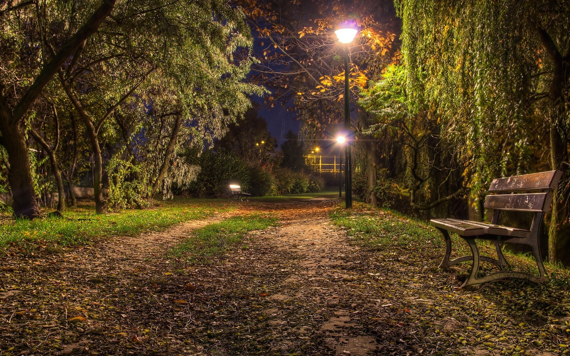 скамейка ночь бесплатно