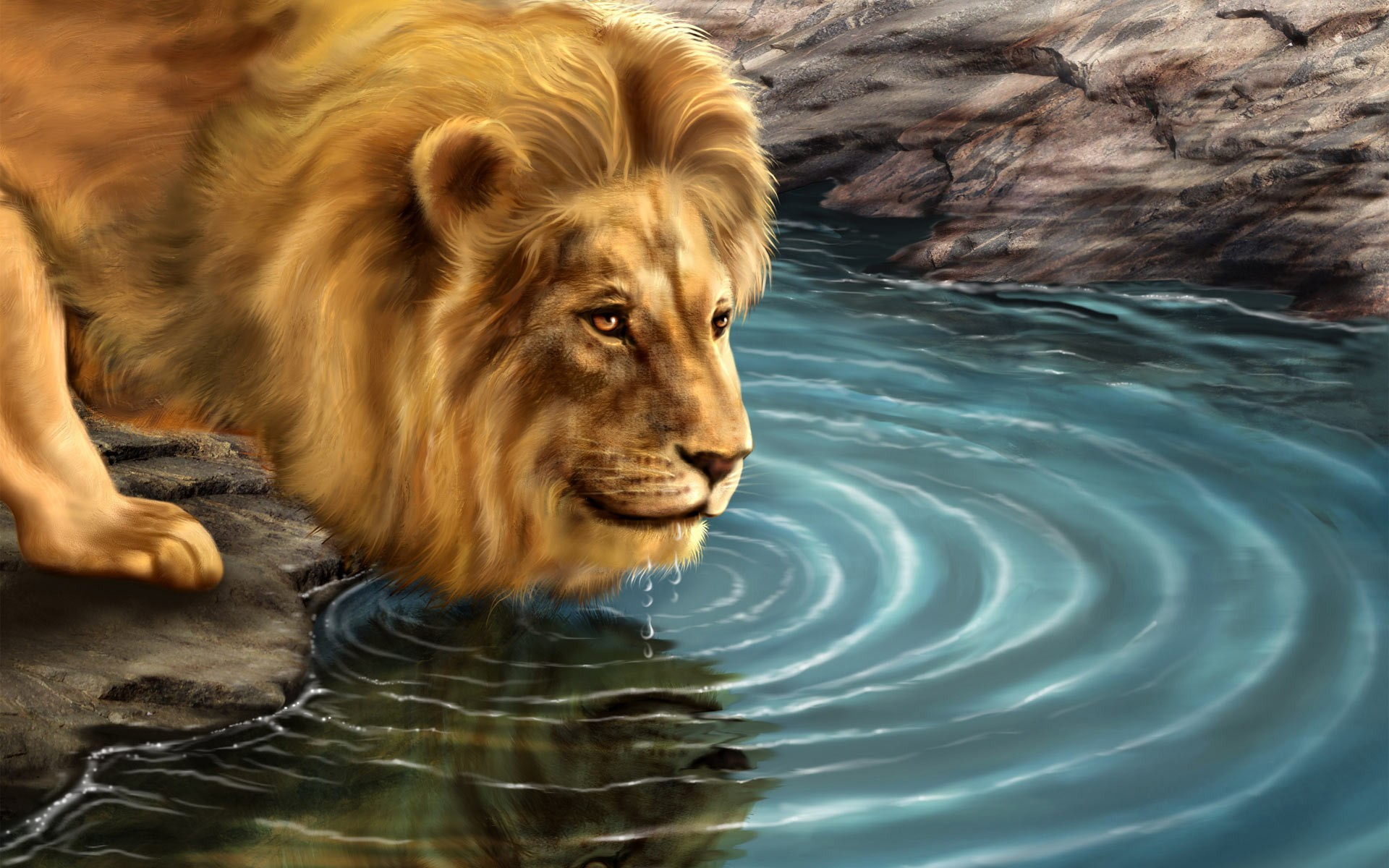 Amazing Animated pictures of lions