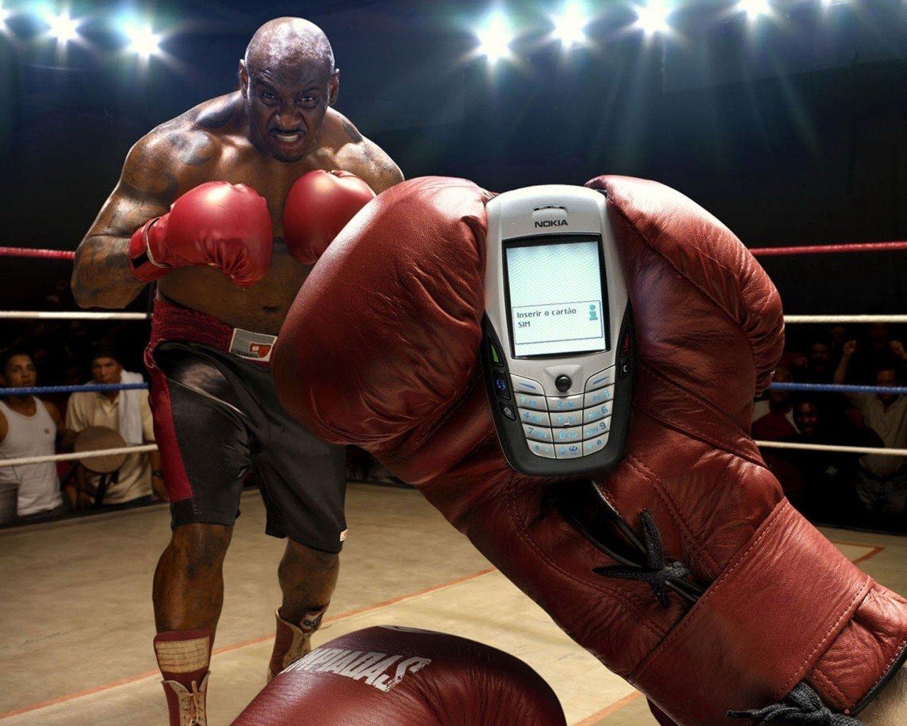 Смешные картинки боксера, язык прикольных