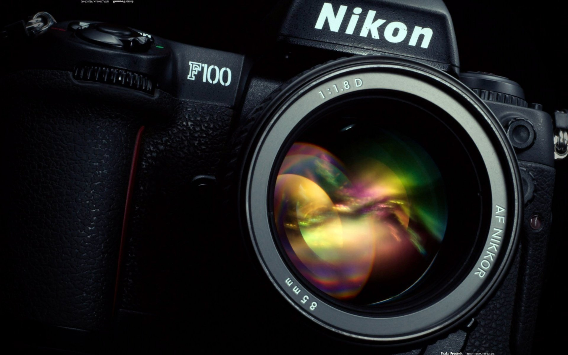Alaskan husky pictures photos Best Nikon Lenses for Landscape Photography - Photography Life