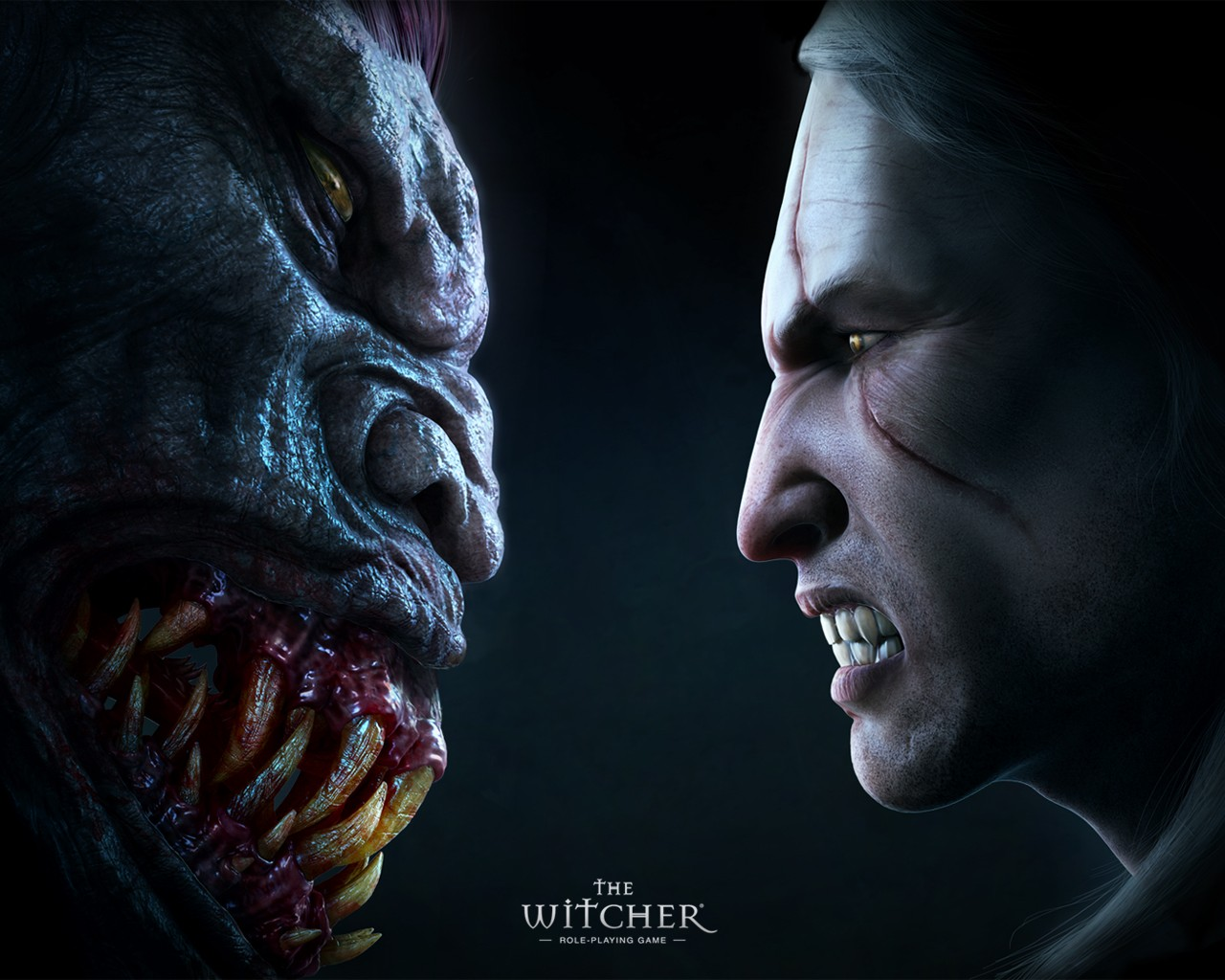 the witcher ведьмак стрыга face-to-face