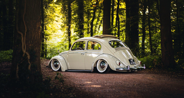 Volkswagen на крыше загрузить