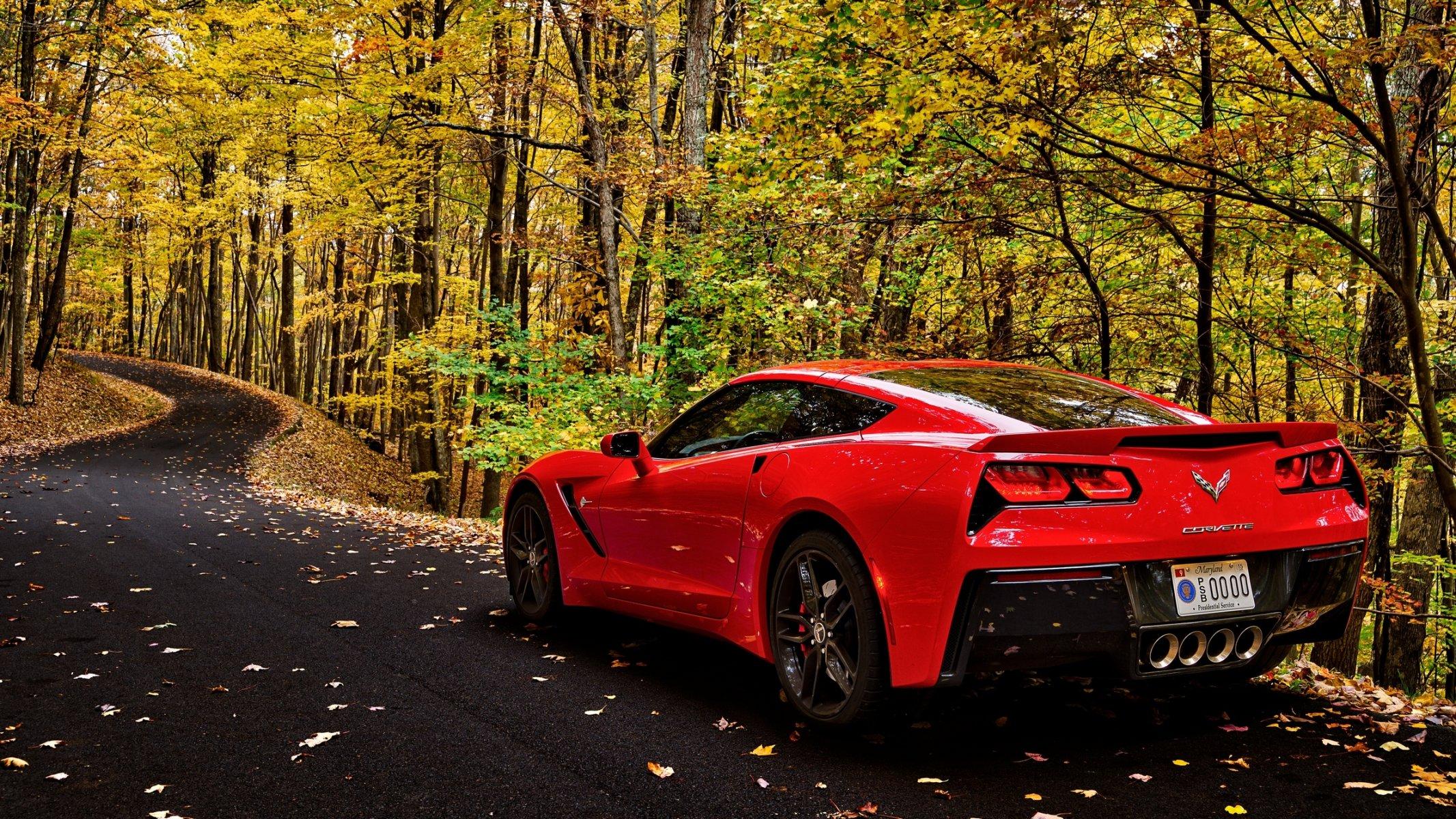 автомобиль осень лес дорога скачать