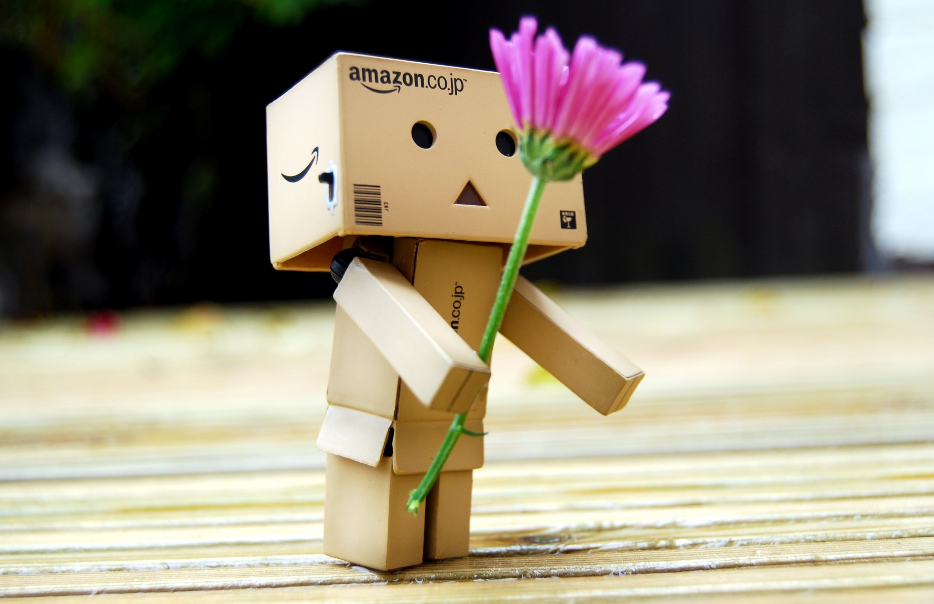 danboard danbo box robot toy flower цветок подарок