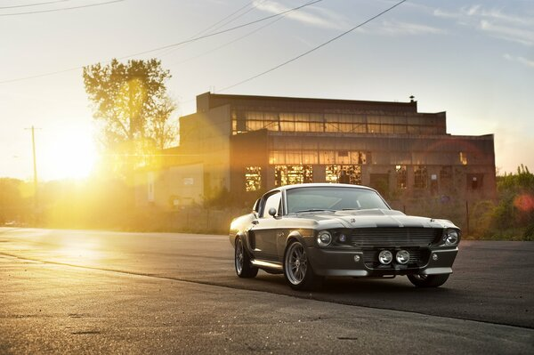 Ford Shelby GT 500 Eleanor silvery muscle car front форд шелби мускул кар серебристый здание солнце блик