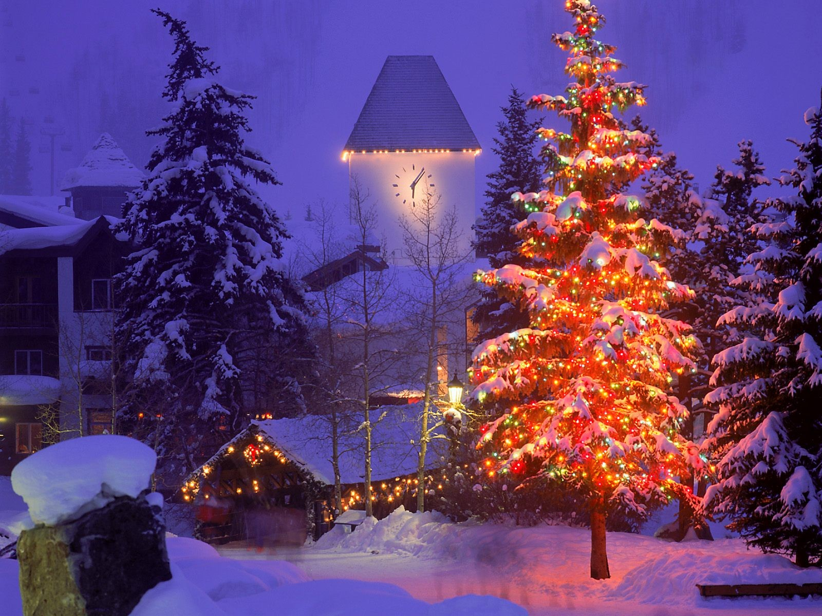 Поздравления, картинки наряженная елка и снег