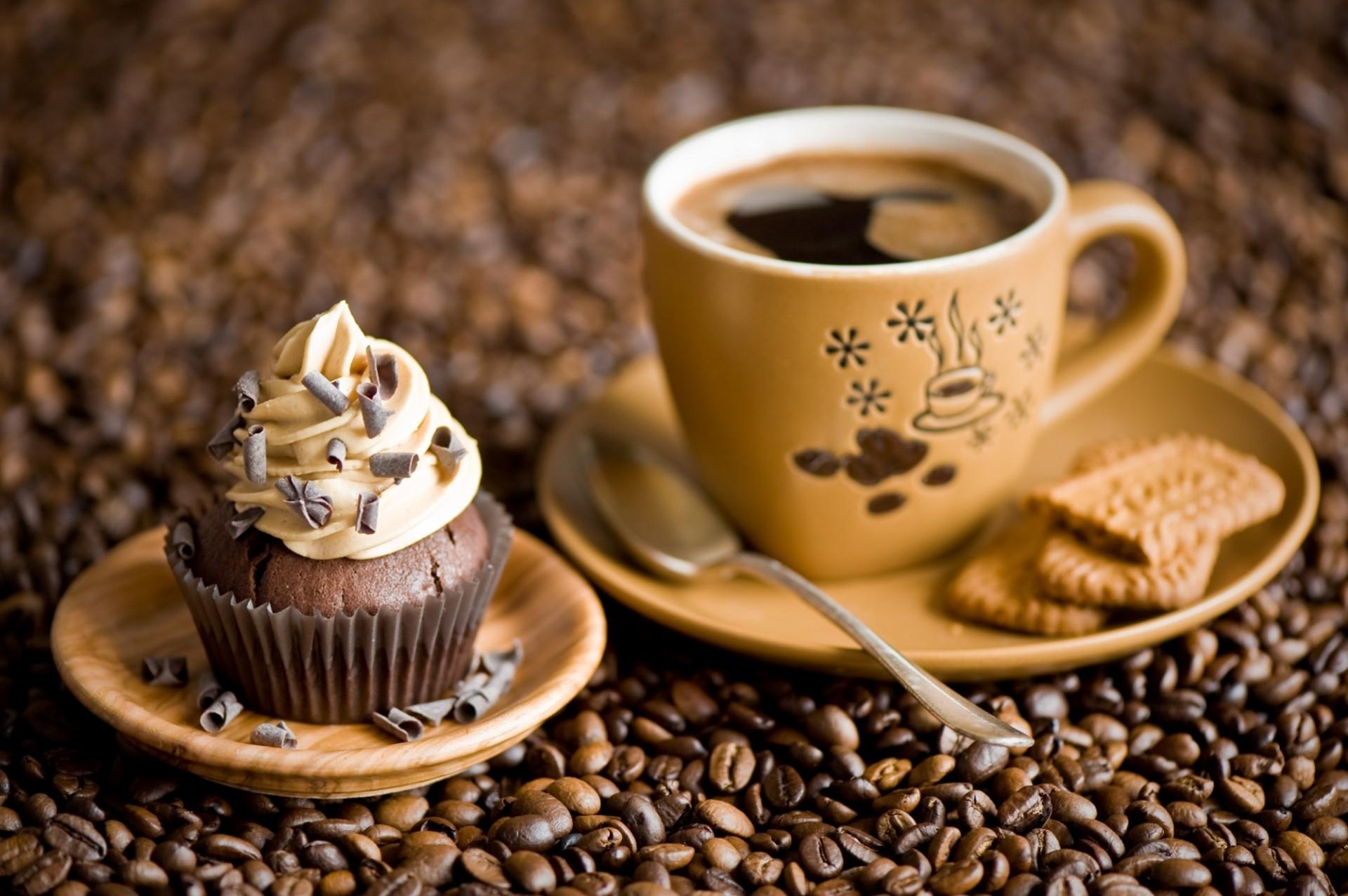 cupcake cafe business proposal