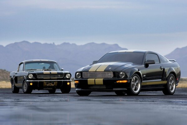 ford shelby gt-h cars widescreen форд шелби машины дорога