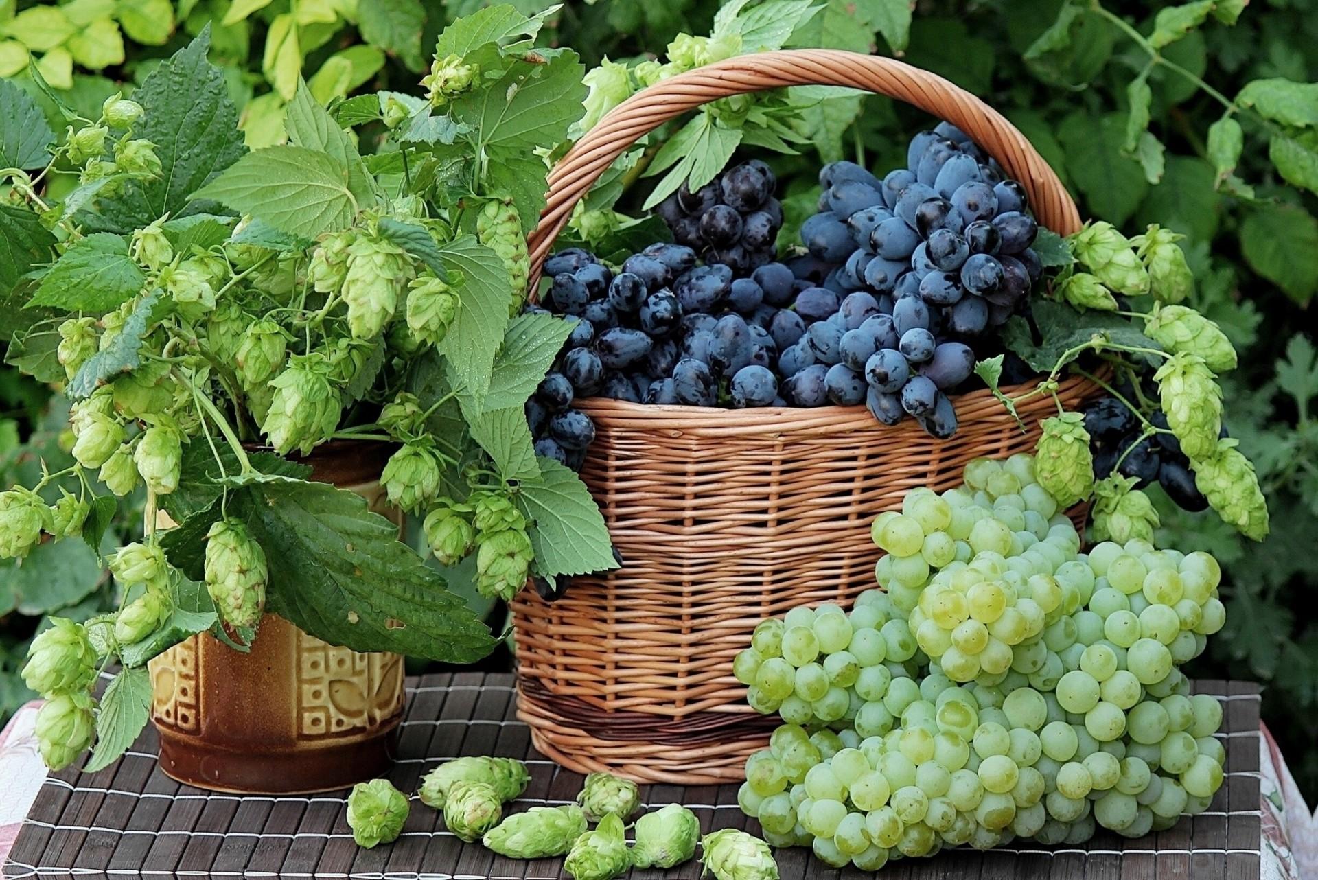 Виноград в корзине без смс