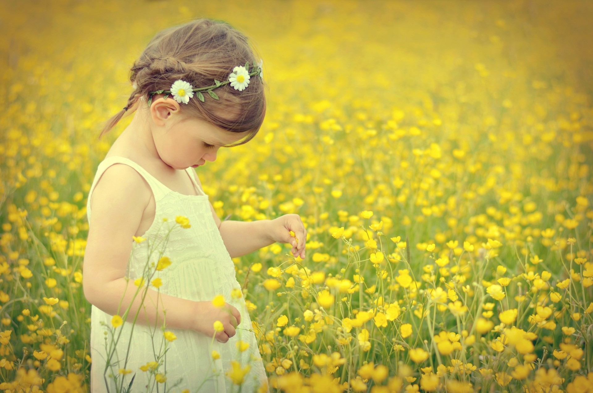 Girl Images, Pictures and Photos - Image Housing Pictures of flower girl