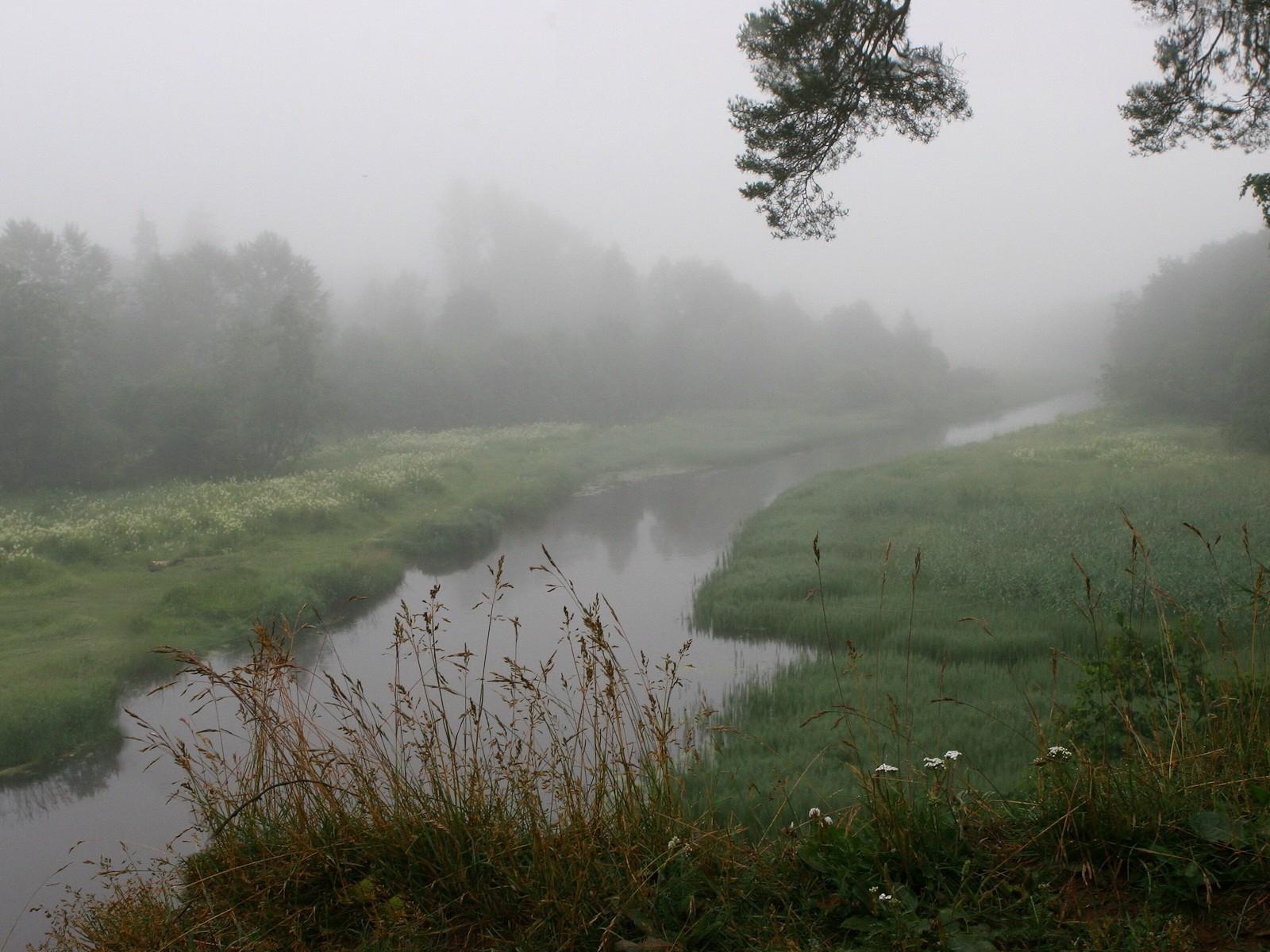 Туман вдоль реки  № 1281415 без смс