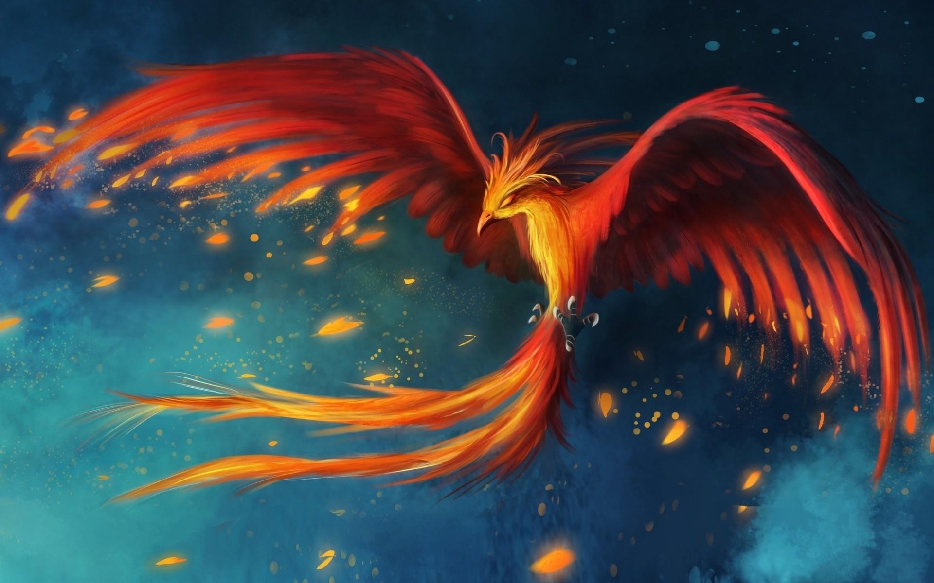 Обои крылья, феникс. Животные foto 13