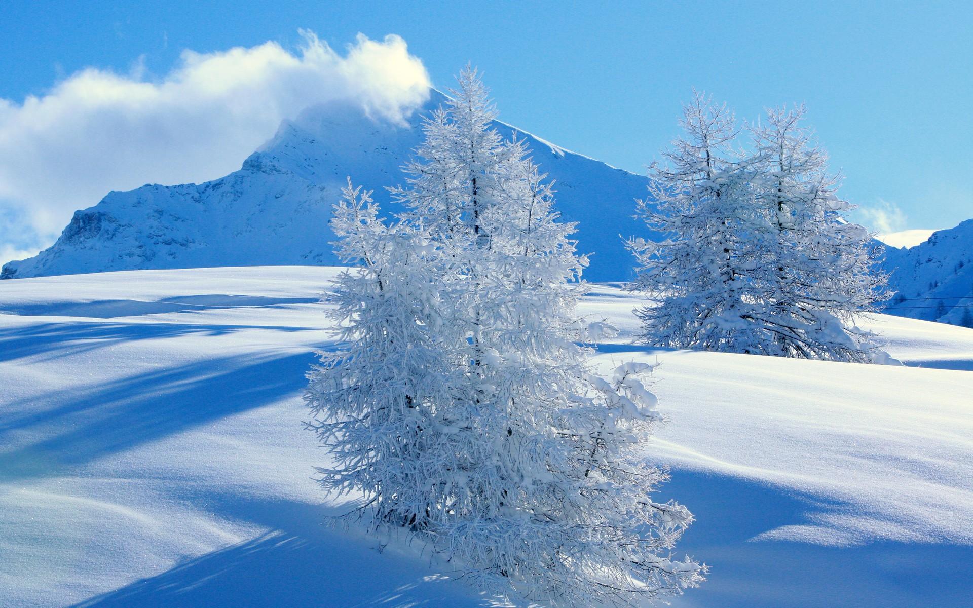 Установить Рабочие Обои Бесплатно Зима