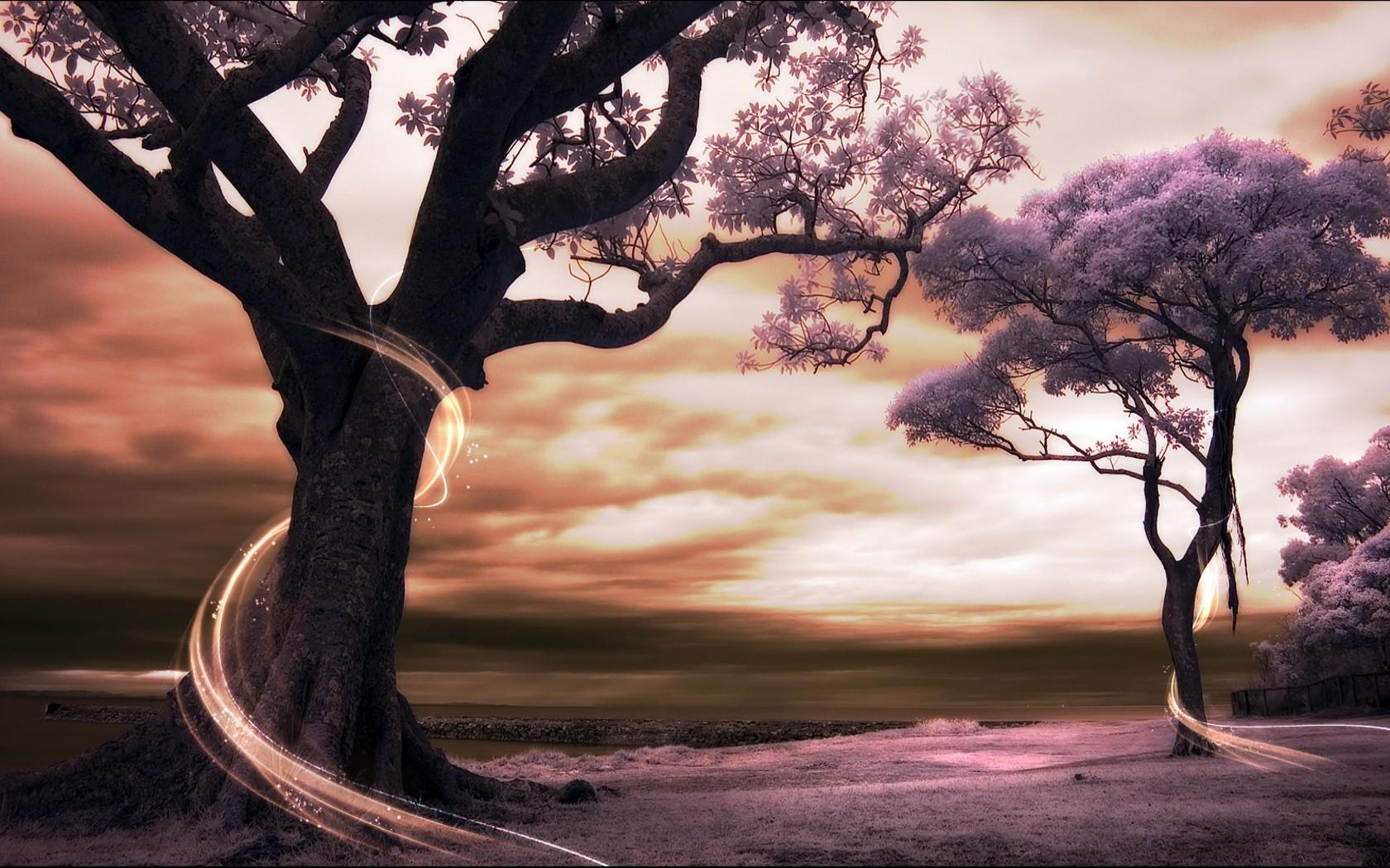 шикарные фотообои одинокое дерево клиники городе