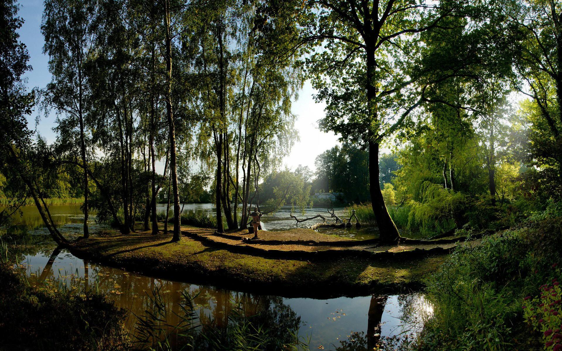 природа солнце озеро отражение деревья бесплатно