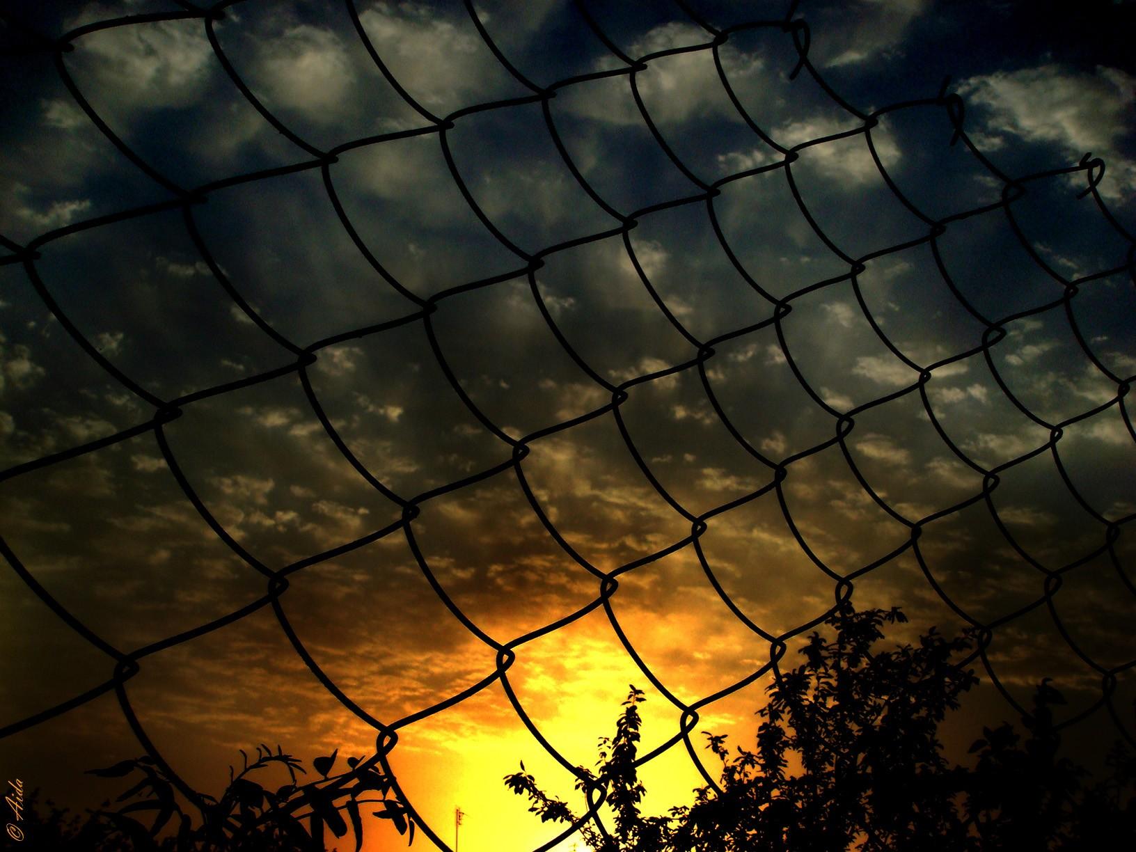 Обои забор, сетка. Разное foto 19