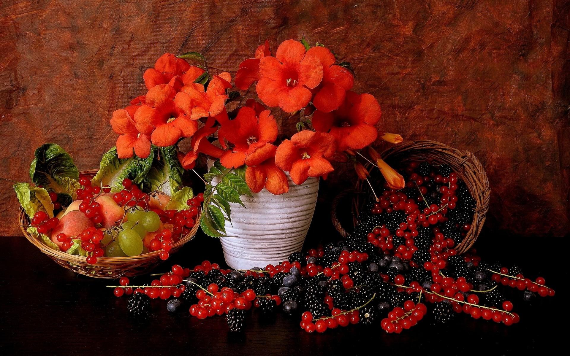 Картинки надписями, красивые открытки с фруктами и цветами