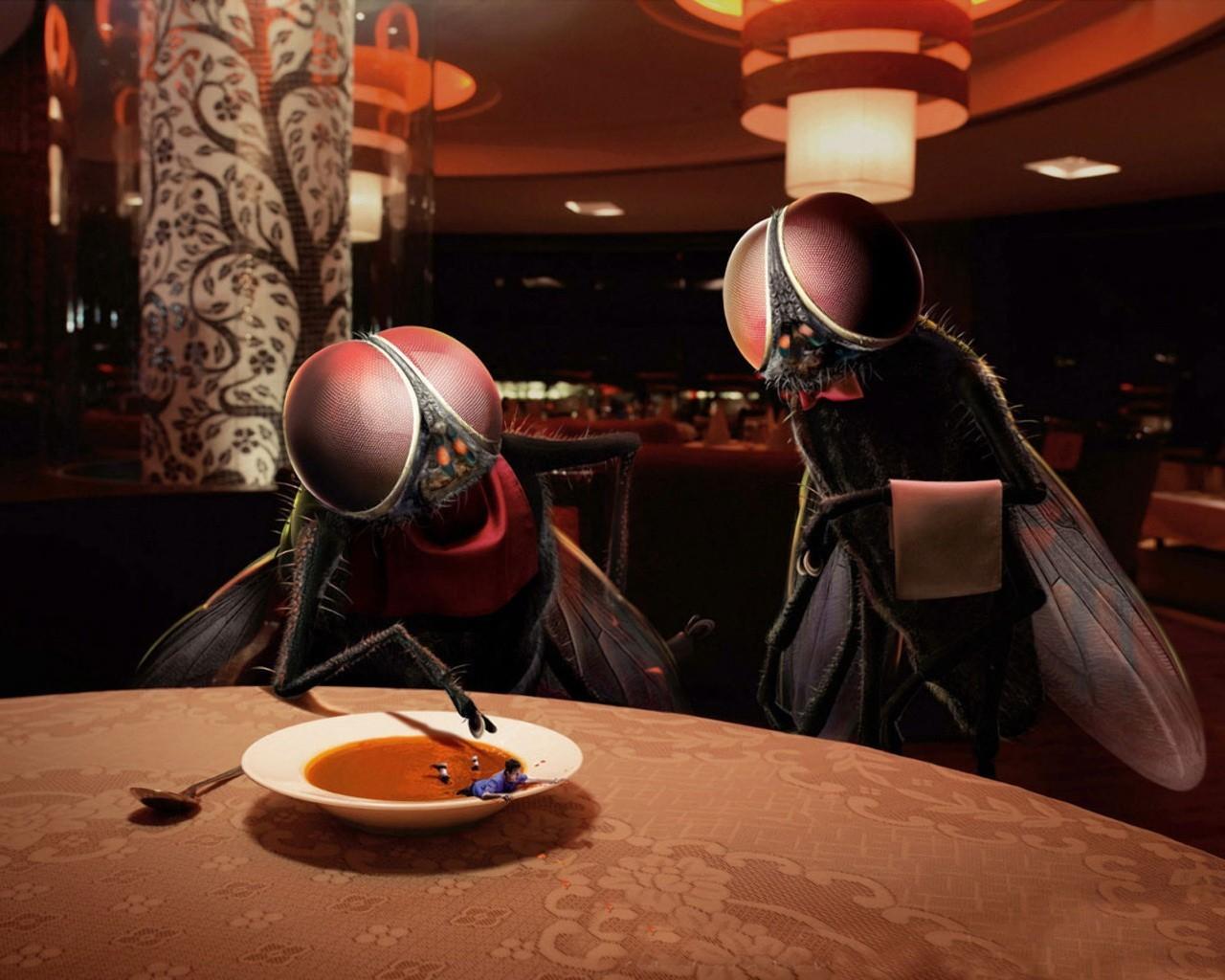 Смешные картинки для кафе