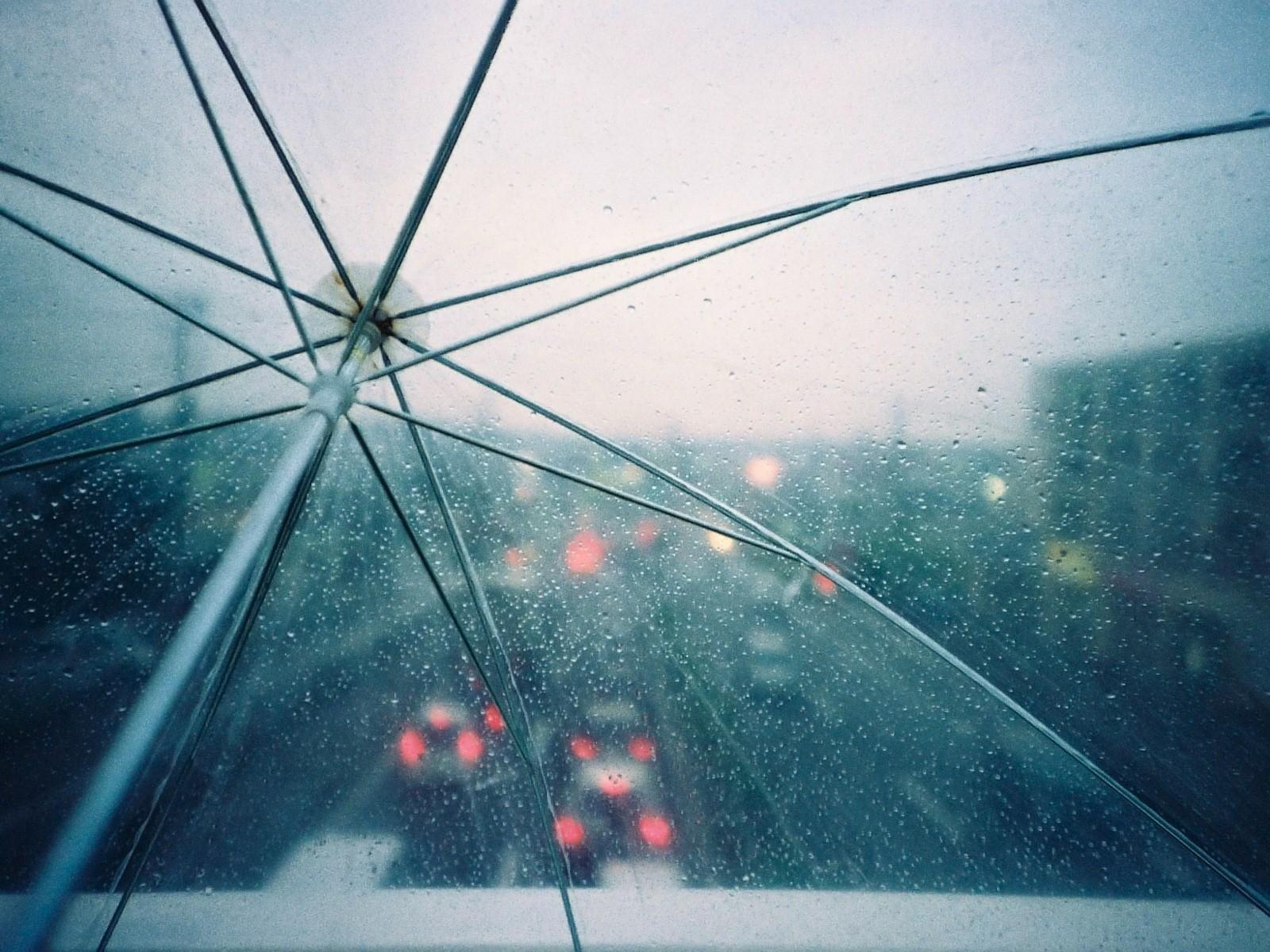 Обои зонт, капли, россия, дождь. Города foto 15