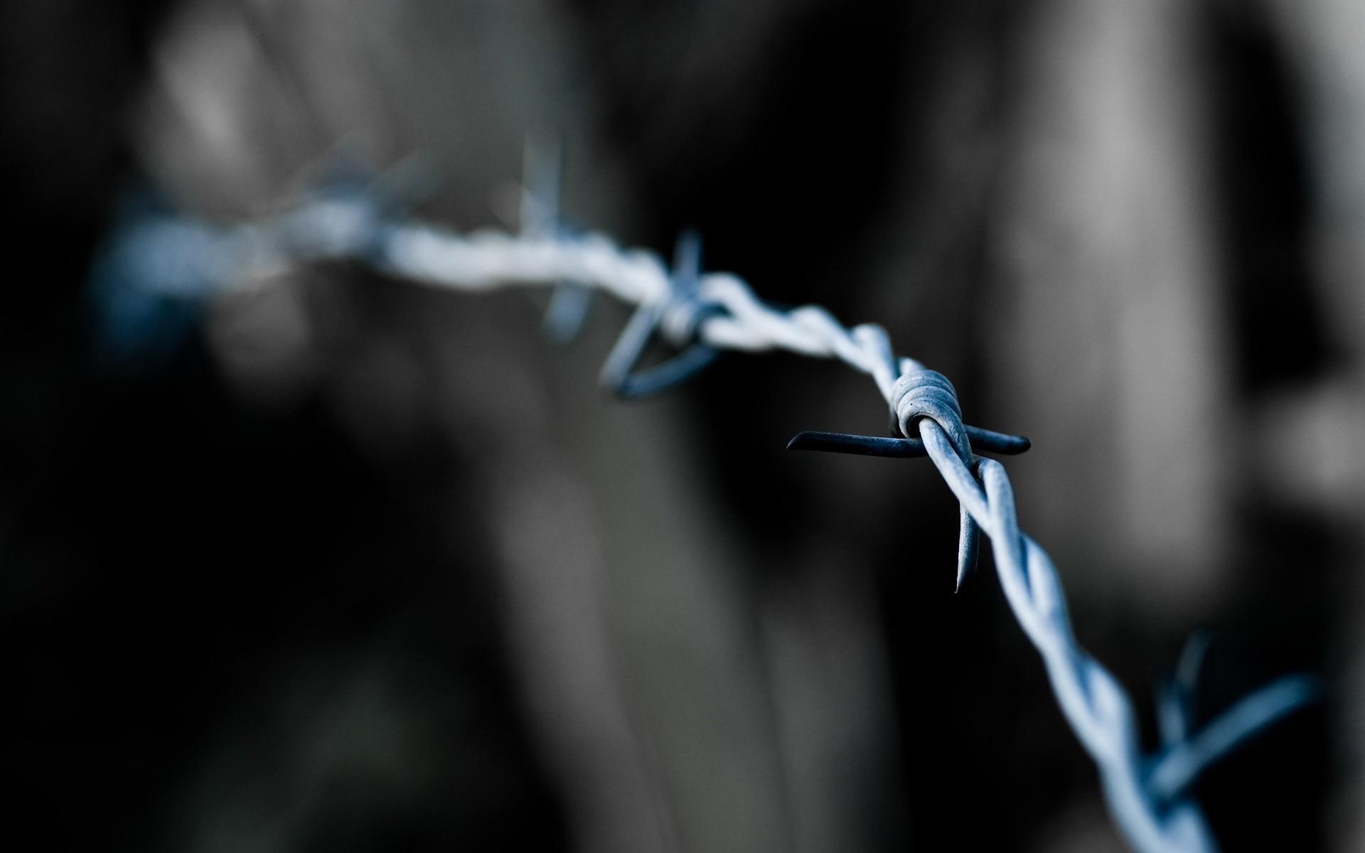 Колючая проволка на заборе  № 1701926 бесплатно