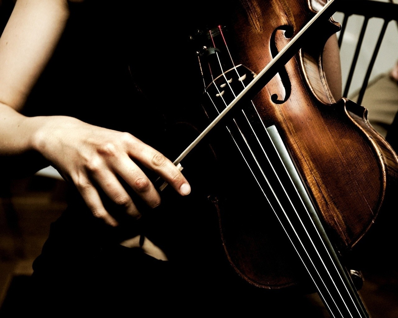violin and music Find violin tracks, artists, and albums find the latest in violin music at lastfm.