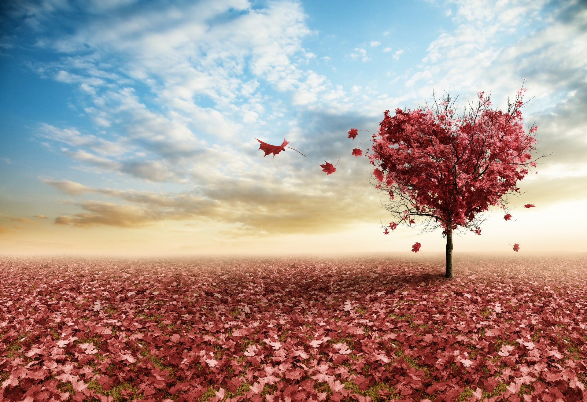 любовь ветки сердца без смс