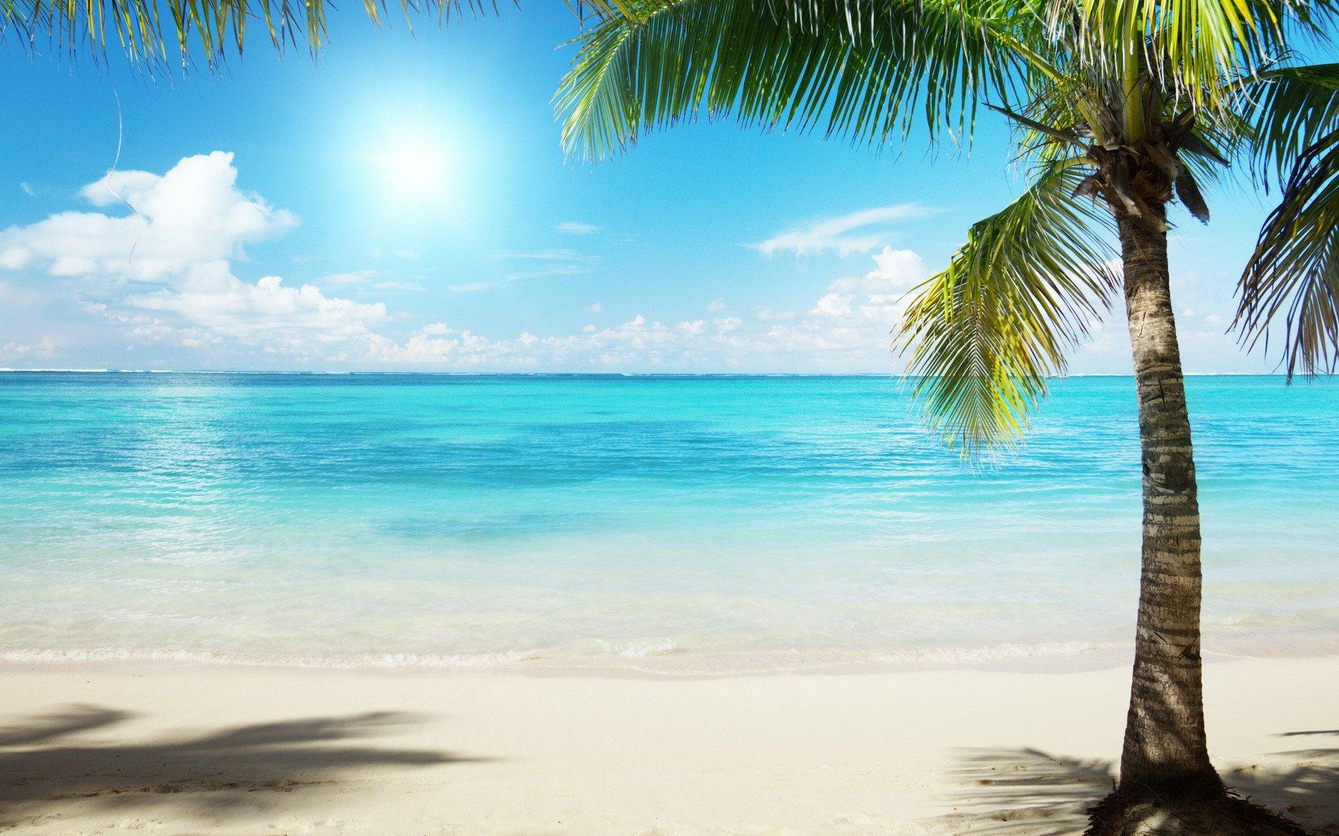 Картинка прикольная, картинки с видом пляжа