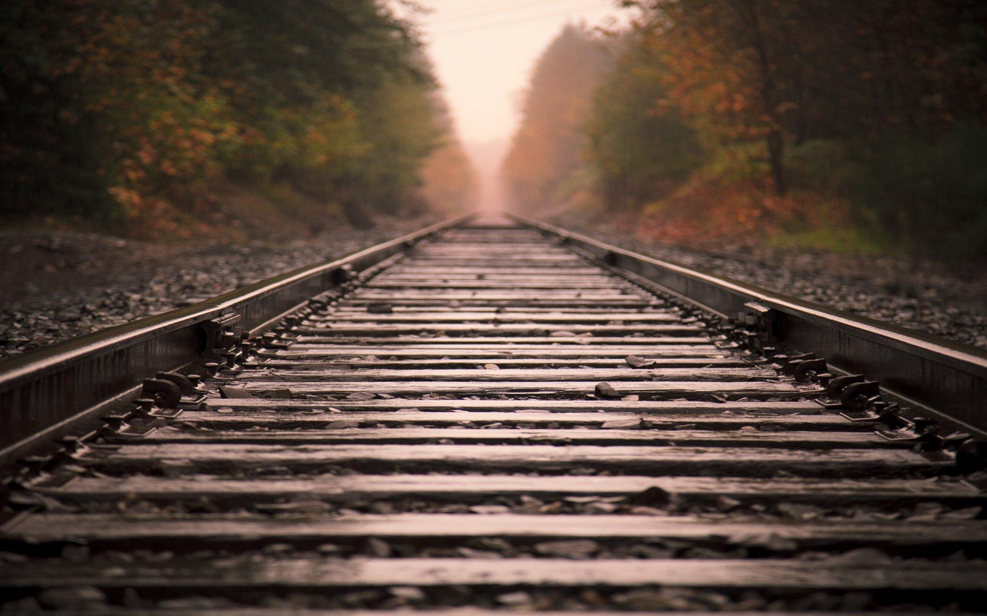 Обои железная дорога, туман, мост. Разное foto 15