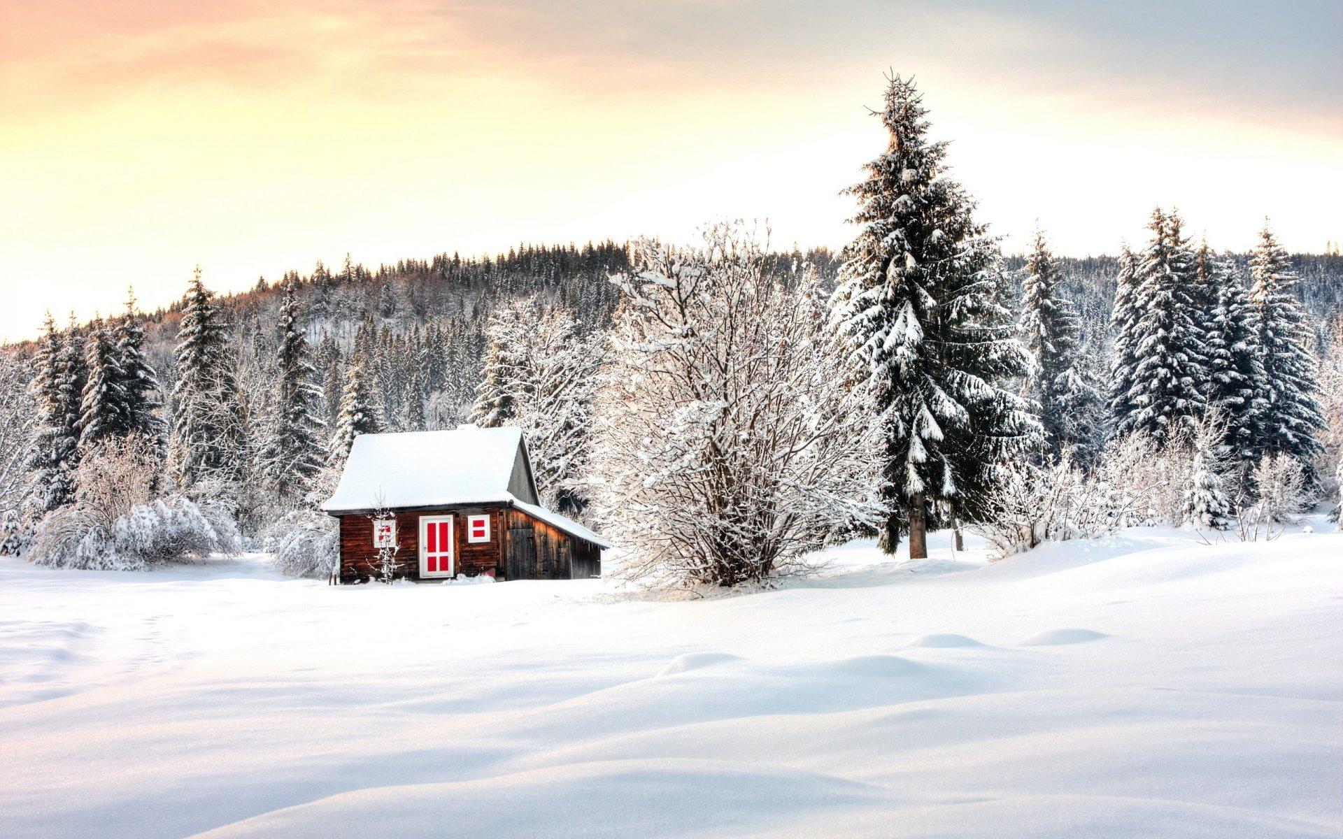 мозга картинка домика в снегу имеет ослепительное