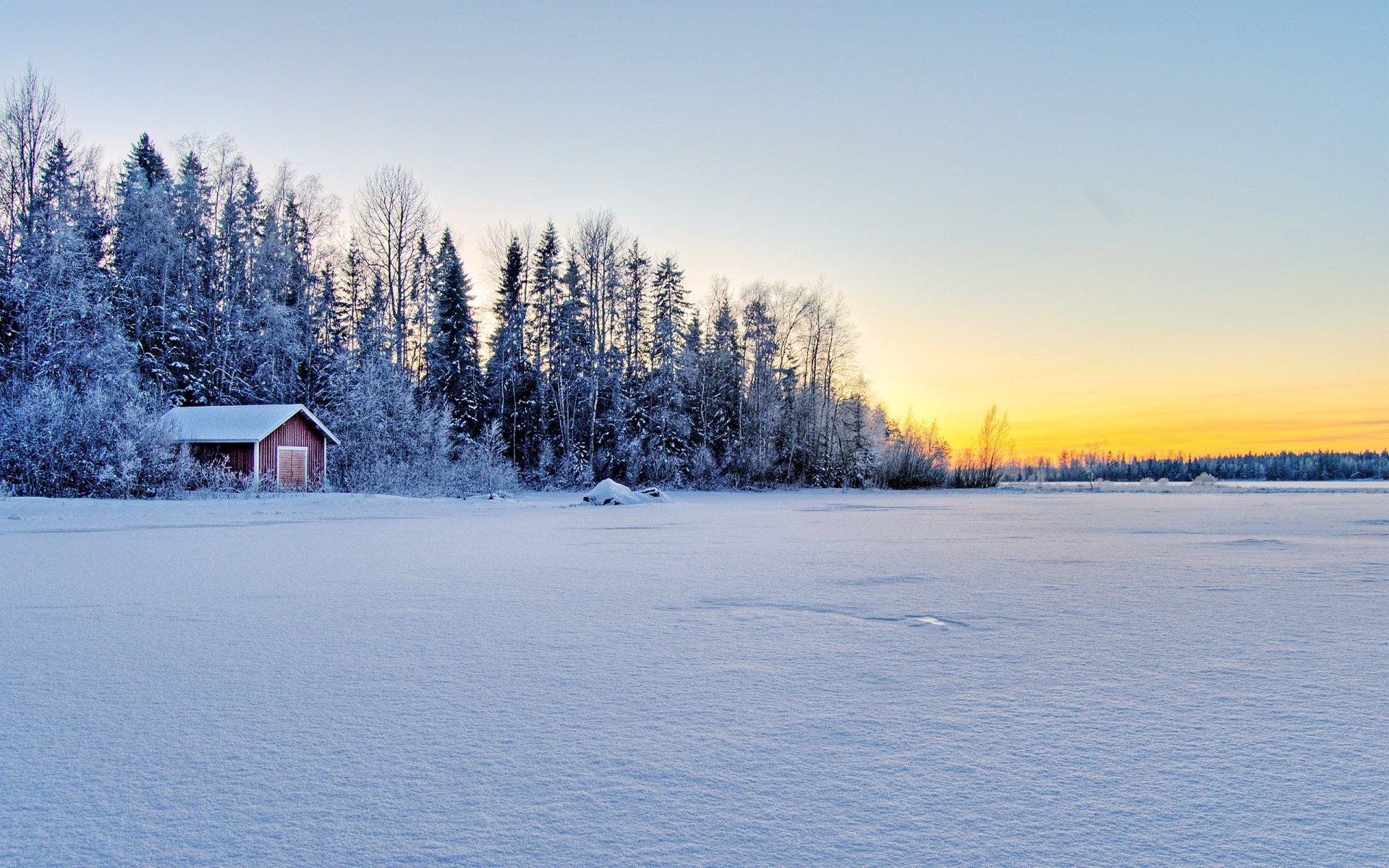 Зимний пейзаж дом в лесу фото
