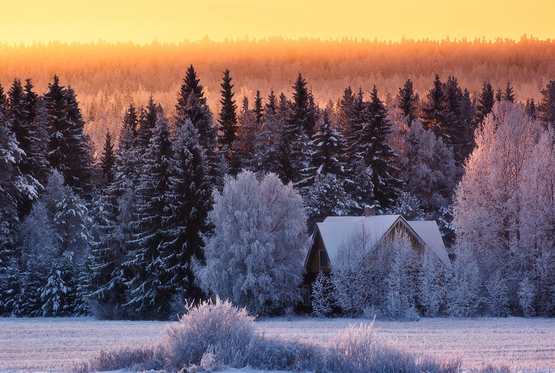 Зимний домик в лесу картинки, картинки
