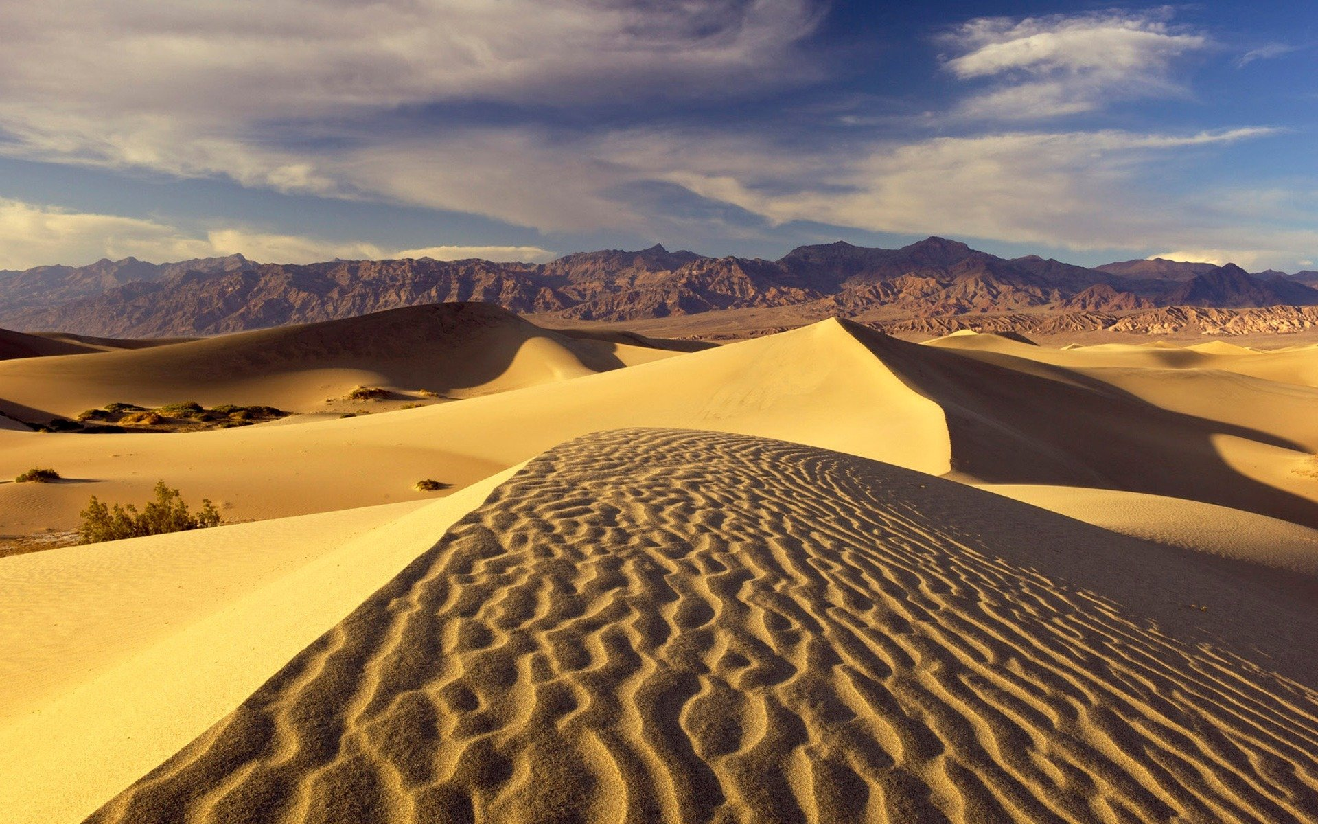Beautiful pictures of deserts BBC Nature - Desert videos, news and facts