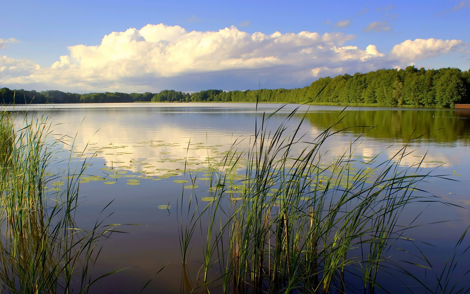 Картинки с речкой природа, гифы красивые