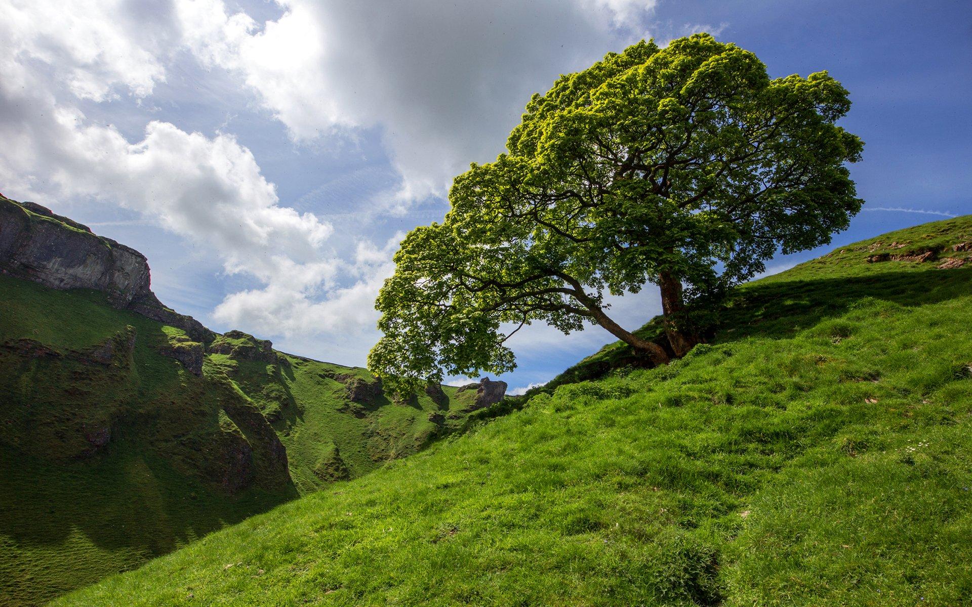 склон зелень лето без смс