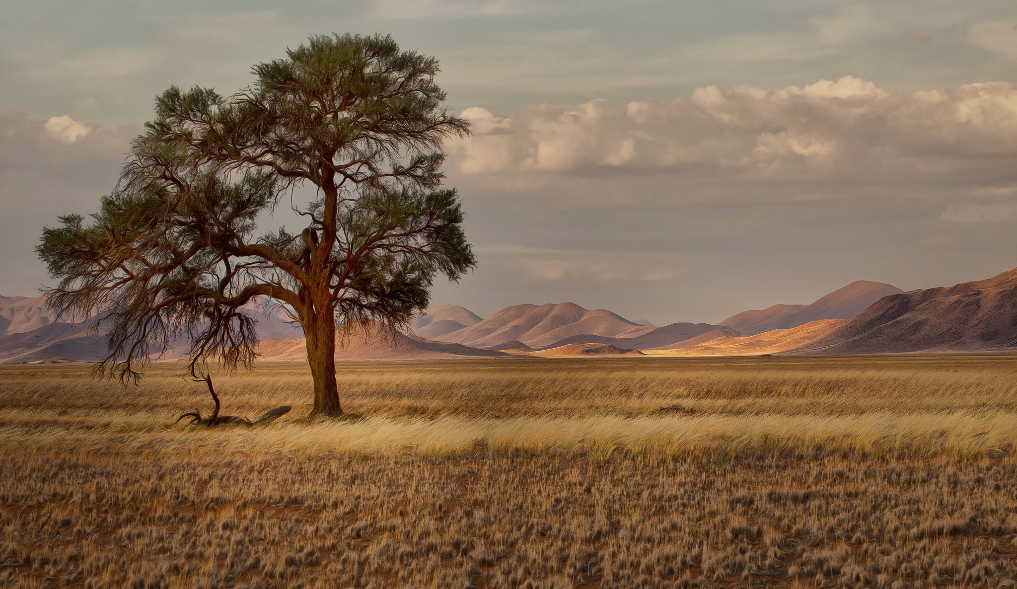 природа Намибия Африка пейзаж река загрузить