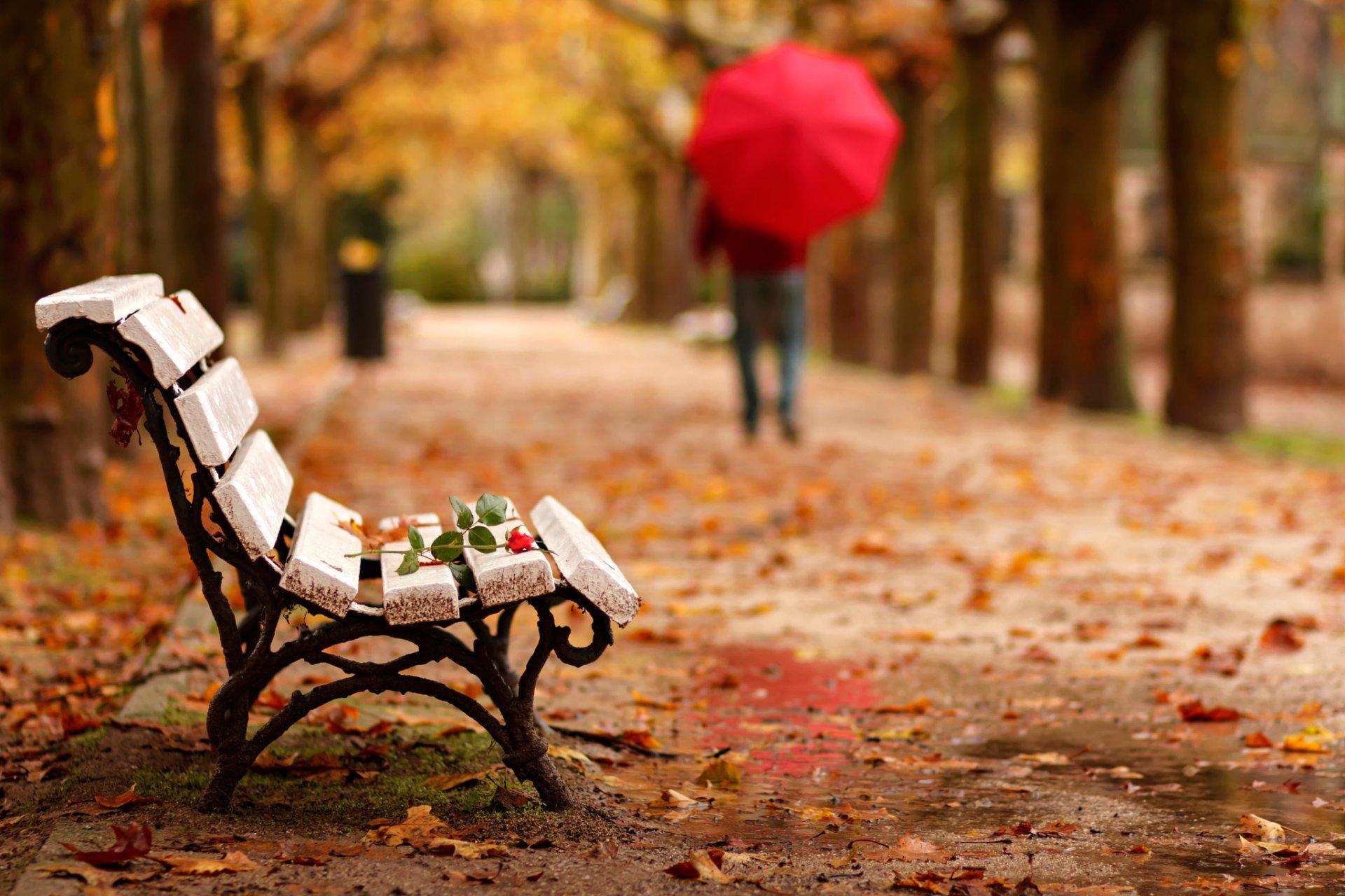 С зонтиком в лесу  № 3394175 без смс