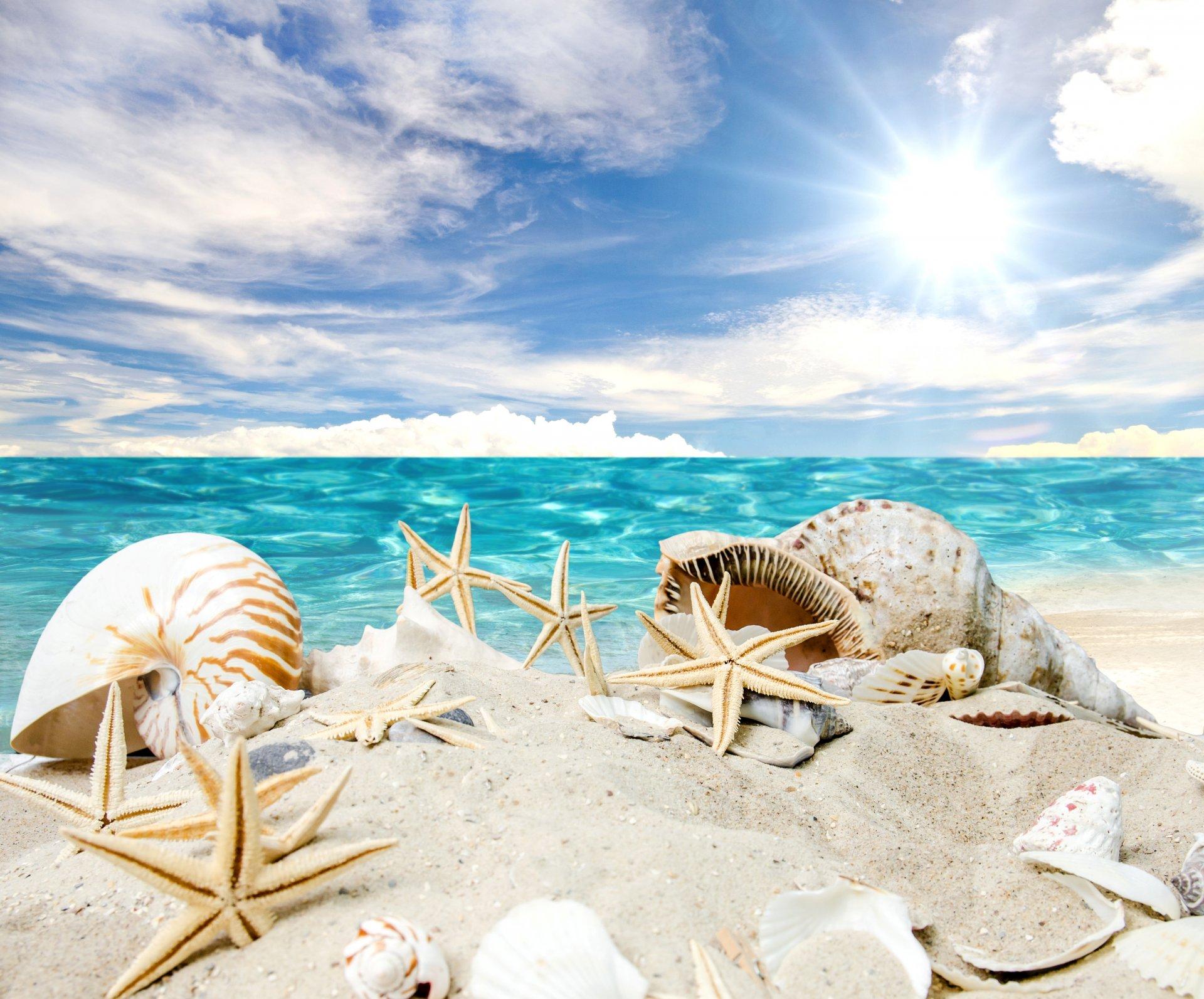 Картинки на тему лето на пляже