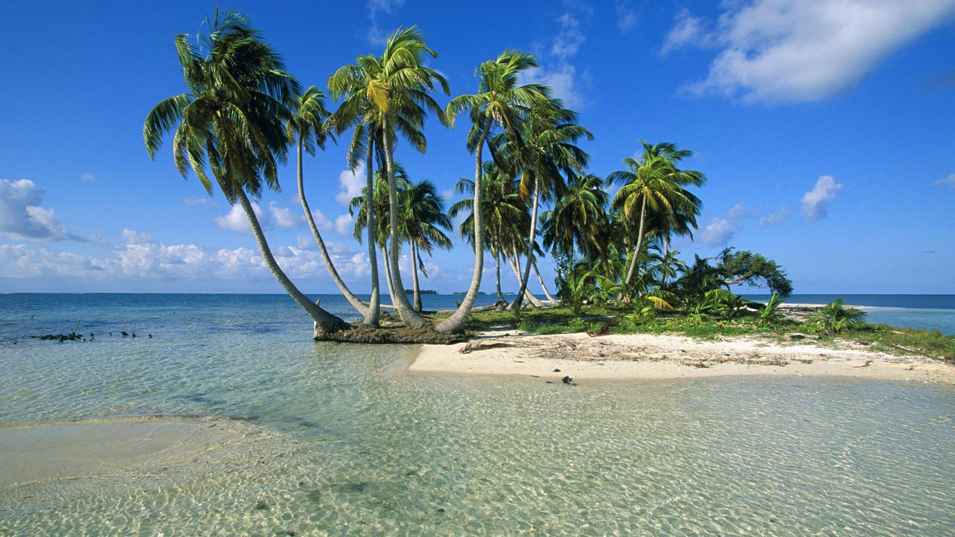 Photos of palm island