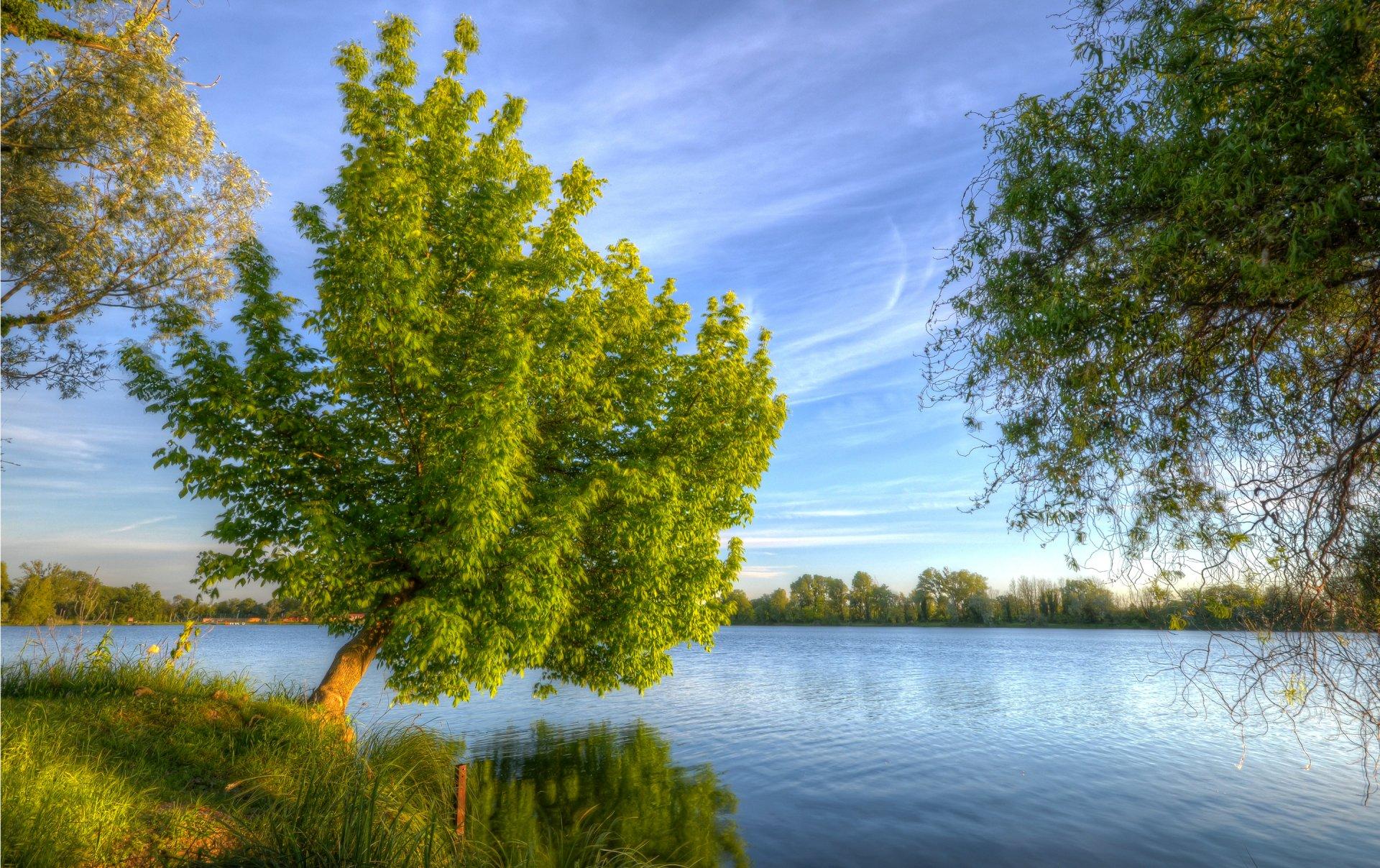 она препятствует фото деревья и река на рабочий стол конечно совсем согласен