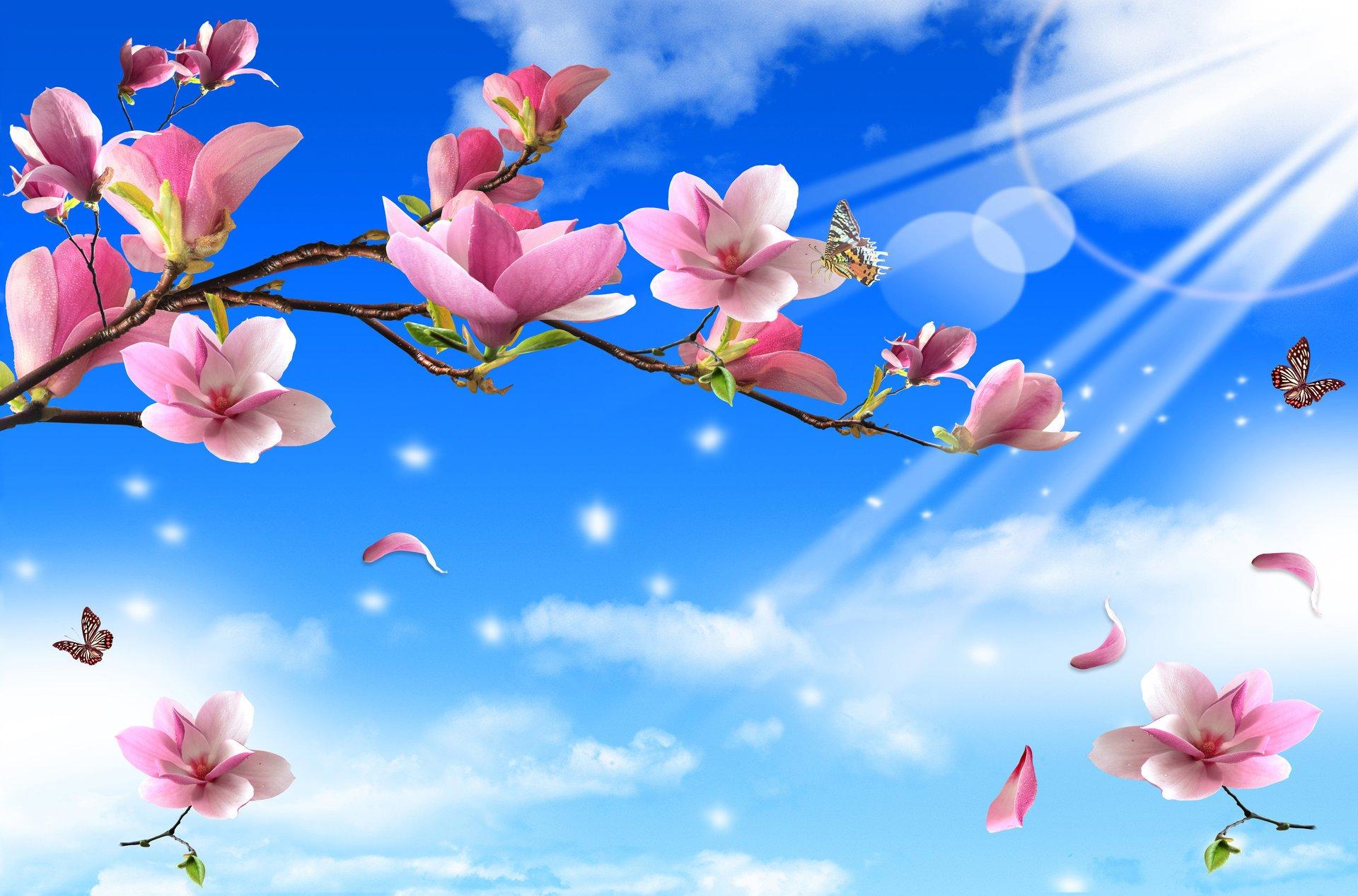 алюкобонд картинки для баннера весны правильной агротехнике возможно