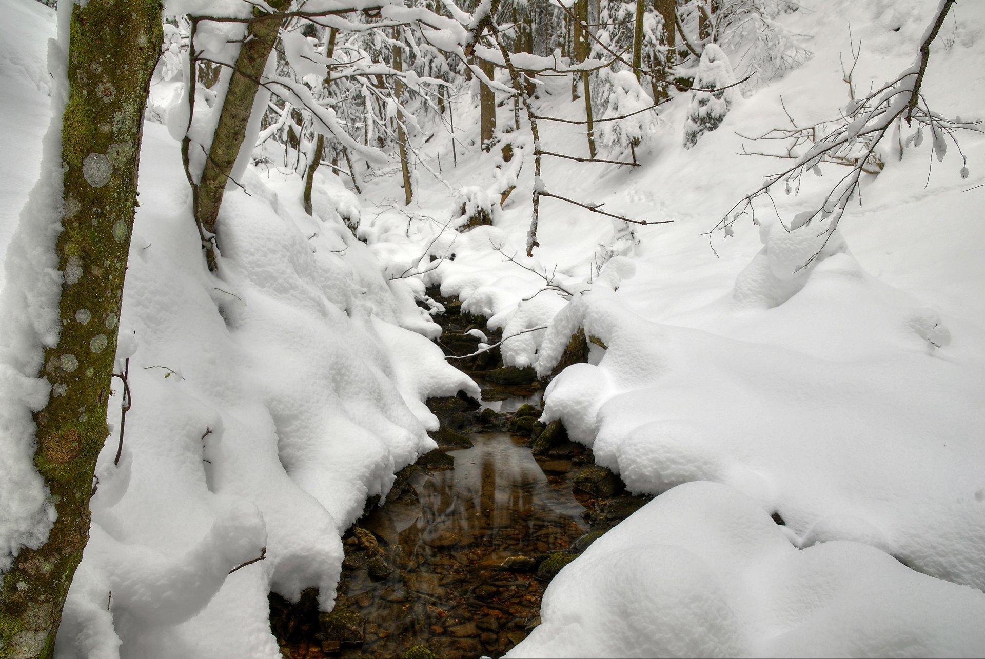 Картинка учителя, картинки тает снег природы