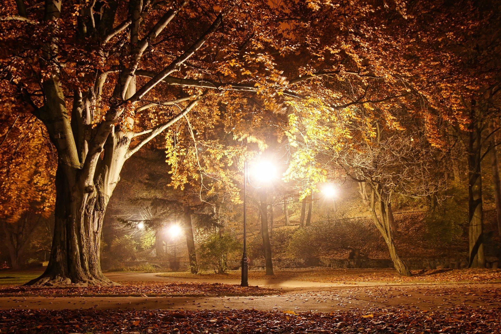 Парки с красивыми фонарями