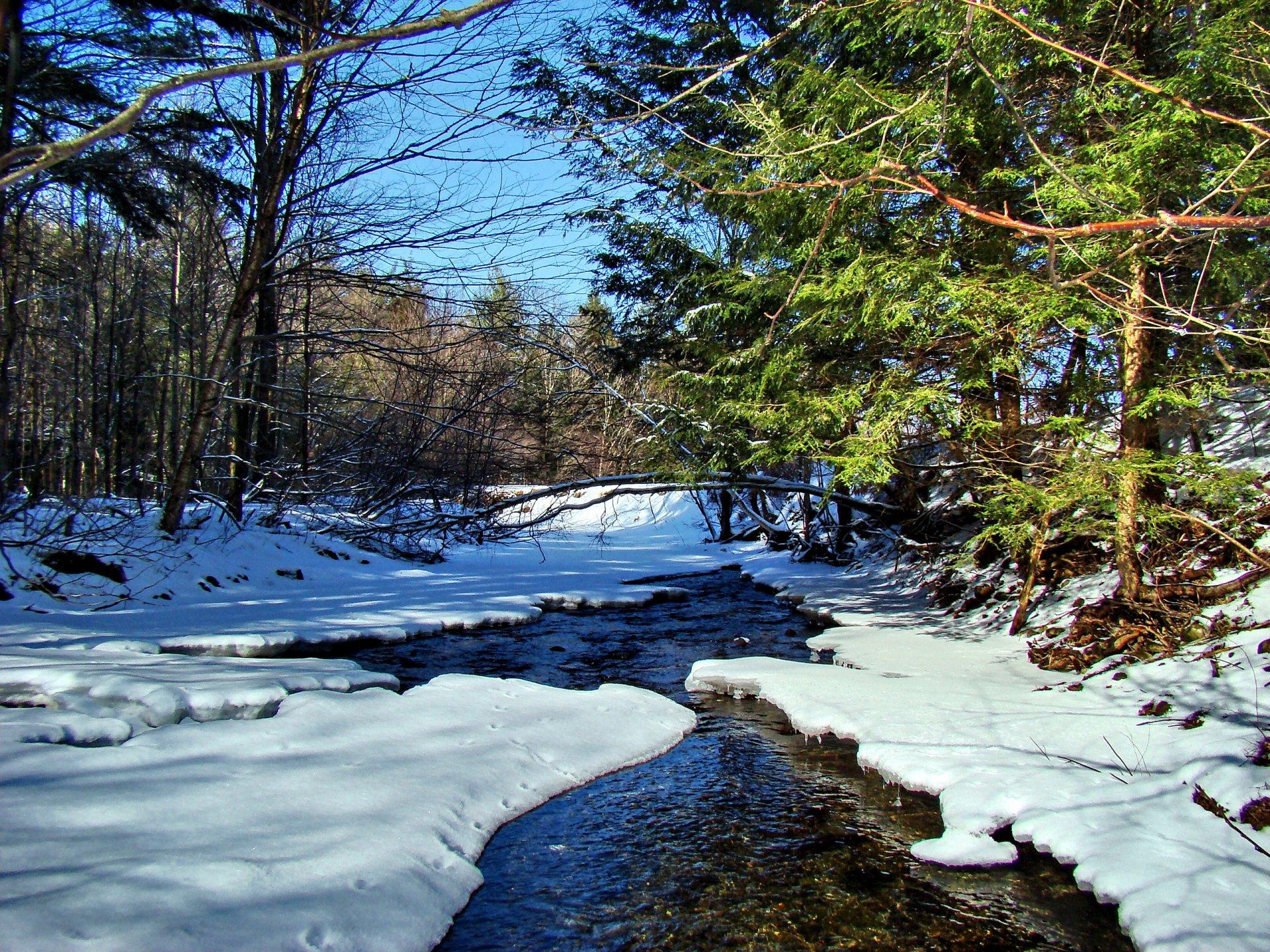 Картинки ручьи весной, своими руками день